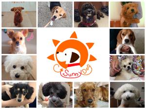 C*SunnyDog (大阪府豊能郡)